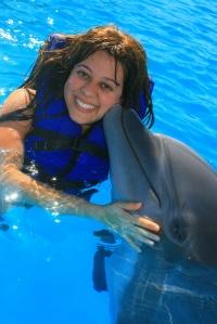 golfinho-3